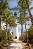 Phare et palmiers Photos stock