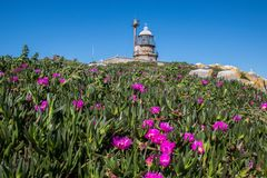Phare landscape. Galicia flowers day sisargas stock photos
