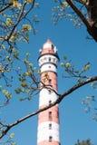 Phare rouge et blanc sur le fond d'un ciel bleu et des branches photo stock