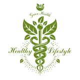 Pharmacy Caduceus icon, vector medical logo for use in holistic. Medicine, rehabilitation or pharmacology. Homeopathy creative symbol composed with mortar and Stock Photography