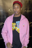 Pharrell Williams on the red carpet. Pharrell Williams appearing on the red carpet Royalty Free Stock Image