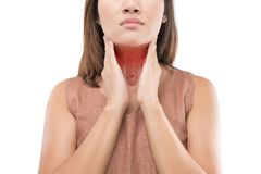 Pharynx. The Photo Of Pharynx On Woman`s Body Isolate On White Background, Windpipe, Concept with Healthcare And Medicine Royalty Free Stock Photography