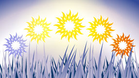 Phase Sun. Picture of several phases of the sun over grass field Royalty Free Stock Photos