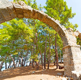 phaselis sea  bush gate  in  myra  the      old column  stone  c Royalty Free Stock Images