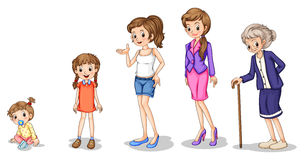 Phasen einer wachsenden Frau Stockbilder
