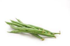 Phaseolus vulgaris Lizenzfreie Stockbilder