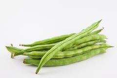 Phaseolus vulgaris de haricot vert Photo stock