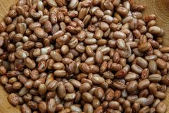 Carioca Beans into a bowl. Agriculture, seed. Phaseolus vulgaris is scientific name of Pinto Bean legume. Also known as Frijol Pinto and Feijao Carioca. Closeup royalty free stock image