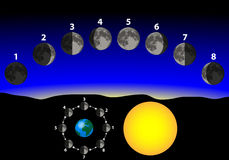 Phases of the moon. Relative to earth stock illustration