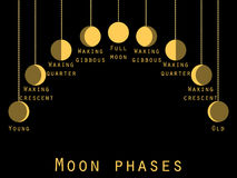 The phases of the moon. Lunar phase. Moon stages. Royalty Free Stock Image