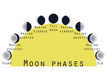 The phases of the moon. Lunar phase. Moon stages. Stock Image