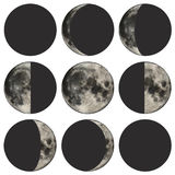 Phases of the moon vector illustration. Detailed vector illustration of the phases of the moon Stock Photography