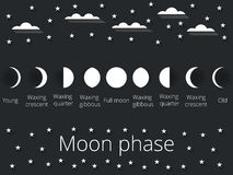 The phases of the moon. Vector illustration. Royalty Free Stock Photo