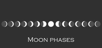 The phases of the moon. The whole cycle from new moon to full. Vector Royalty Free Stock Photography