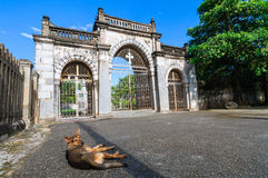 Phat Diem cathedral gate #1 Royalty Free Stock Photography