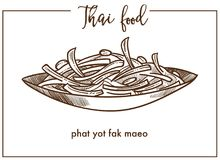 Phat yot fak maeo in bowl from Thai food. Young chayote shoots and leaves stir-fried with tasty oyster sauce or steamed isolated cartoon monochrome flat vector vector illustration