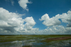 phatthalung沼泽地  库存照片