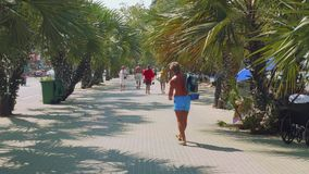 Phatthaya, Thailand - circa January 2018: Boulevard in Phatthaya with palms and people walking along it stock video