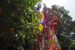 Phaya Nak Royalty Free Stock Images