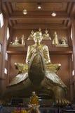 Phaya Tao Ruan Turtle Luang Royalty Free Stock Photography