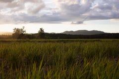 Phayao Nord-Thailand Sonnenuntergang Lizenzfreie Stockbilder