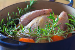 Pheasant in cooking pot stock image