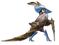 Pheasant-dandy. The pheasant-dandy walks on the meadow Stock Images