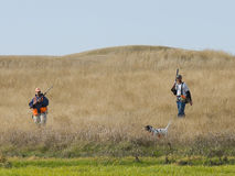 Pheasant Hunting stock images
