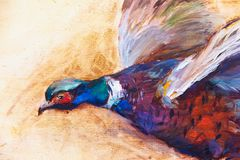 Pheasant oil painting, impressionism painting, for background stock illustration