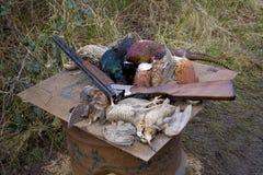 Pheasant shoot. Shotgun and game birds Royalty Free Stock Image