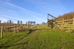 Pheasant shooting enclosures Stock Photography