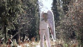 Phenomenon of an Angel stock video footage