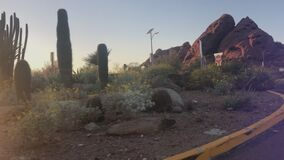 Pheonix,Az, 3.14.2018. Desert Botanical Gardens. Driving to the entrance of Desert Botanical Gardens in Phoenix, Arizona stock video