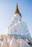 Phetchabun,泰国- 2016年11月27日:美丽的白色大Bu 免版税库存照片