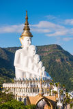 Phetchabun Thailand - November 27, 2016: Härliga vita stora Bu Arkivfoto