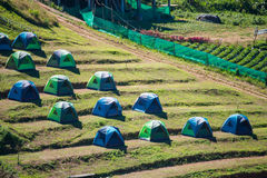 Phetchabun, Thailand - November 27, 2016 :tents camping on hill Royalty Free Stock Photos