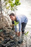 Phetchaburi泰国, 6月9日:泰国在d的学生植物年轻树 图库摄影
