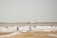 PHETCHABURI,泰国- 2月13 :运载从盐的泰国工作者盐种田2015年2月13日在Phetchaburi,泰国 免版税库存图片