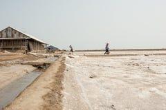 PHETCHABURI, TAILANDIA - 13 DE FEBRERO: Trabajadores tailandeses que llevan la sal de la sal que cultiva el 13 de febrero de 2015 Imagen de archivo