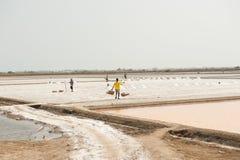 PHETCHABURI, THAILAND - 13 FEBRUARI: Thaise arbeiders die zout van Zout dragen die op 13 Februari, 2015 in Phetchaburi, Thailand  Royalty-vrije Stock Afbeelding
