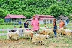 PHETCHBURI, TAILÂNDIA 21 DE JULHO: Grupos não identificados de homens e de wo Fotos de Stock