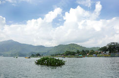 Phewa Lake Stock Photography