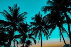 Phi Phi öar Thailand royaltyfria bilder