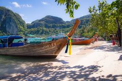 Longtail boats line the shore in Maya Bay at Phi Phi island royalty free stock photography