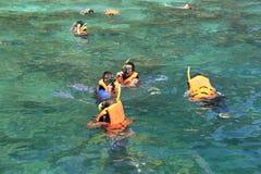 Οι τουρίστες απολαμβάνουν με την κολύμβηση με αναπνευστήρα σε μια τροπική θάλασσα Phi Phi στο isla Στοκ Εικόνες