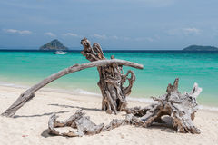 Phi Phi Islands, Thailand Royalty Free Stock Photo