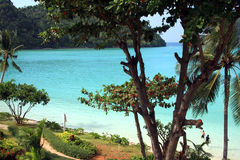 Phi Phi Islands - Thailand Royalty Free Stock Image