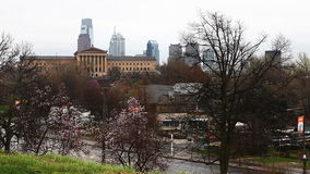 Philadelphia cityscape with blossoms in front stock video