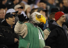 Philadelphia Eagles Fans Stock Photography