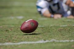 Philadelphia Eagles gegen Carolina-Leoparden Stockfotografie